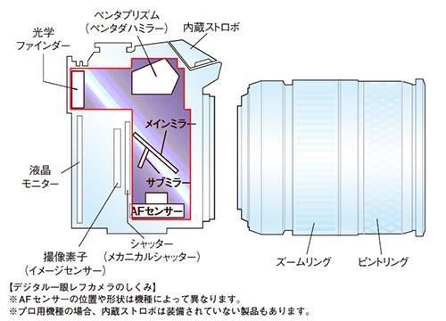 一眼レフの構造を横からみた透視図。赤枠の部分が小型化には大きな障害になります