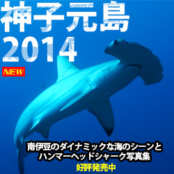 神子元島2014 Wide and Blue