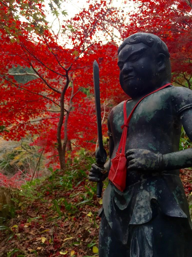 神奈川県伊勢原 大山寺の紅葉